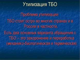 Утилизация ТБО Проблема утилизации ТБО стоит остро во многих странах и в Росс