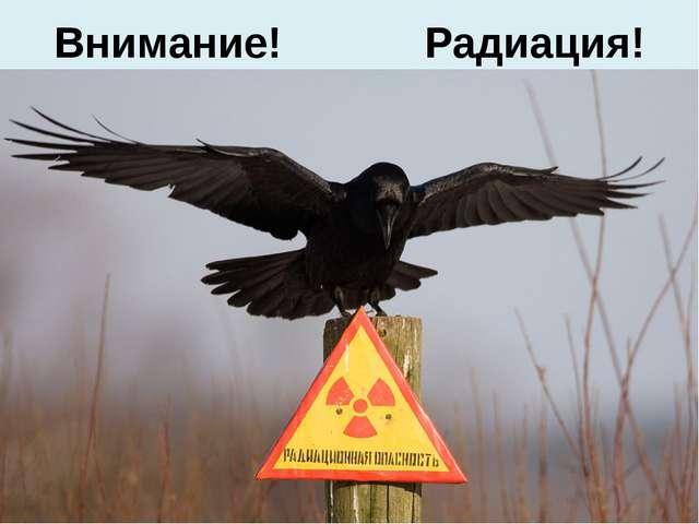 Внимание! Радиация!