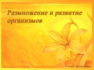 © Карпова Е.Г. Все права защищены