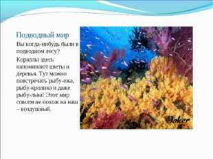 Подводный мир Вы когда-нибудь были в подводном лесу? Кораллы здесь напоминают