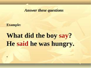 Answer these questions Example: What did the boy say? He said he was hungry. .