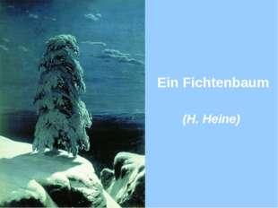 Ein Fichtenbaum (H. Heine)
