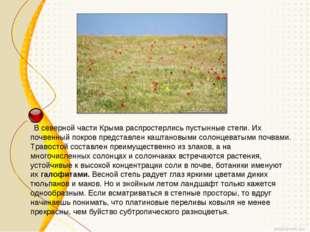 В северной части Крыма распростерлись пустынные степи. Их почвенный покров п