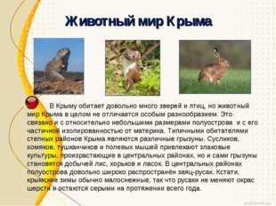 Животный мир Крыма В Крыму обитает довольно много зверей и птиц, но животный