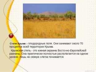 Степи Крыма– плодородные поля. Они занимают около 70 процентов всей террито