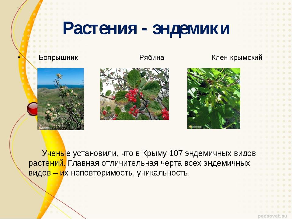 Растения - эндемики Боярышник Рябина Клен крымский Ученые установили, что в К...