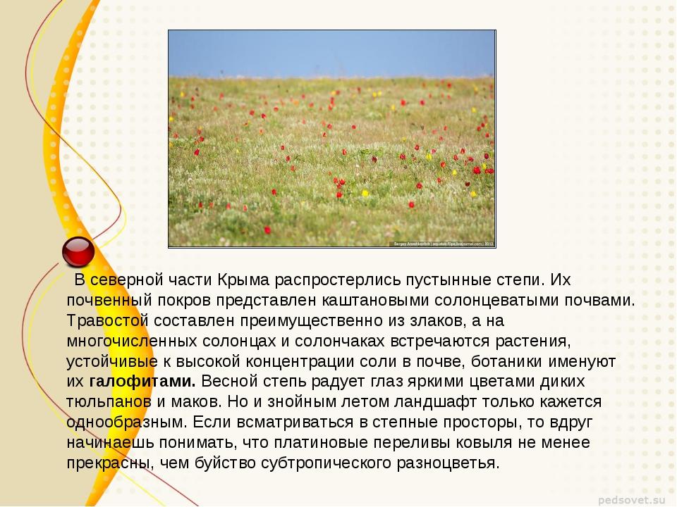В северной части Крыма распростерлись пустынные степи. Их почвенный покров п...