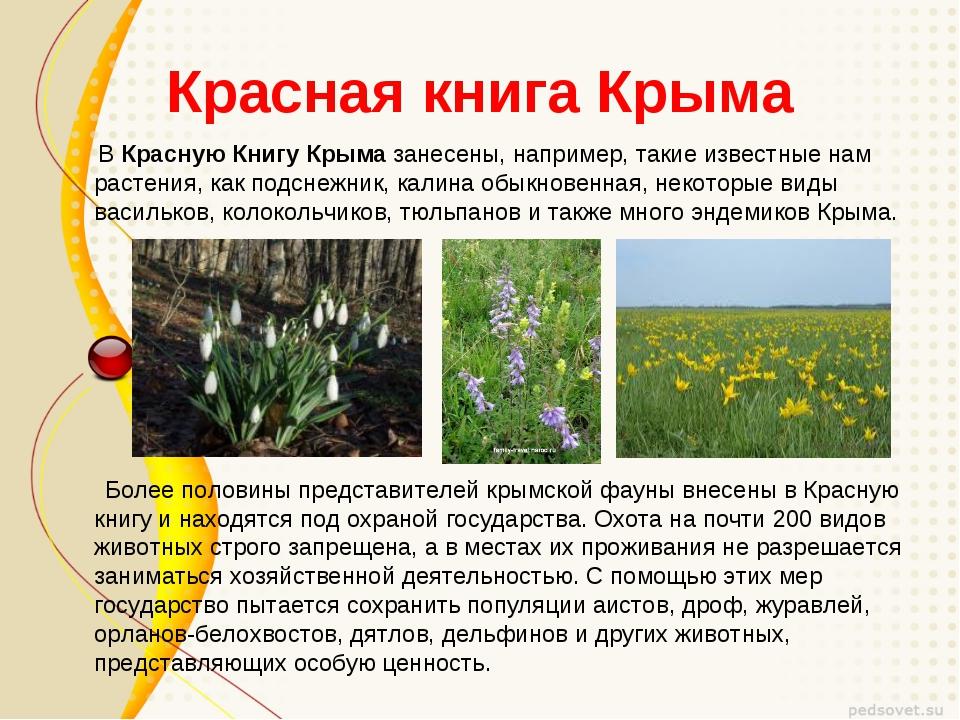 Красная книга Крыма ВКрасную Книгу Крымазанесены, например, такие известные...