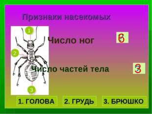 Признаки насекомых Число ног Число частей тела ? ? 6 3 1. ГОЛОВА 2. ГРУДЬ 3.