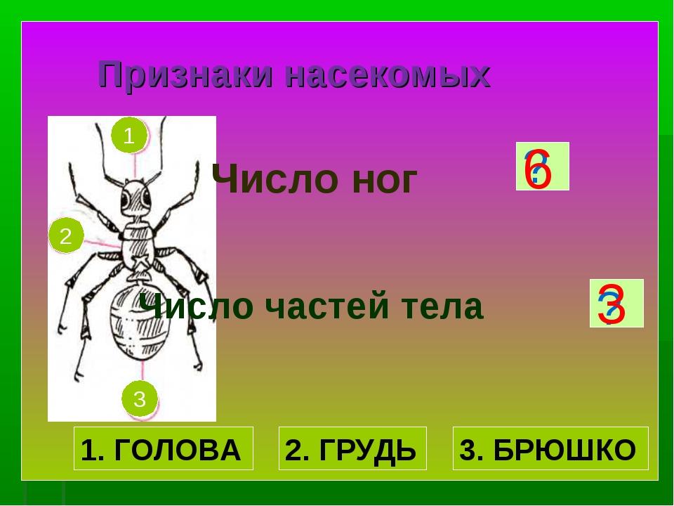 Признаки насекомых Число ног Число частей тела ? ? 6 3 1. ГОЛОВА 2. ГРУДЬ 3....