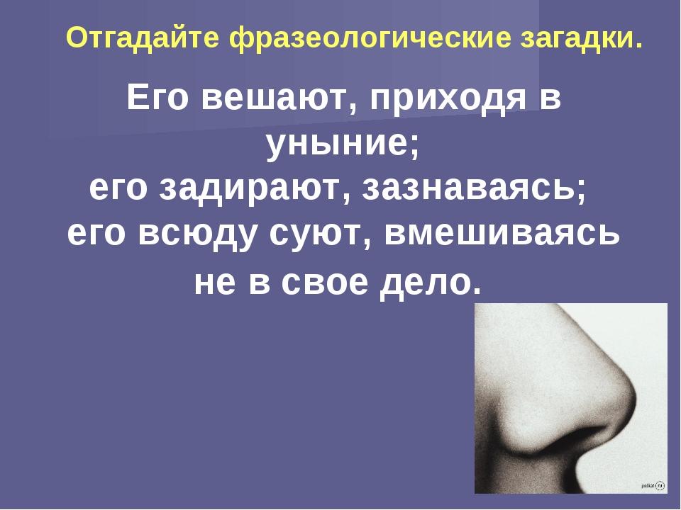 Его вешают, приходя в уныние; его задирают, зазнаваясь; его всюду суют, вмеши...