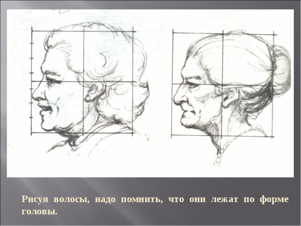 Рисуя волосы, надо помнить, что они лежат по форме головы.