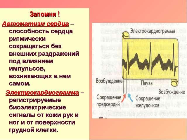 Запомни ! Автоматизм сердца – способность сердца ритмически сокращаться без в...