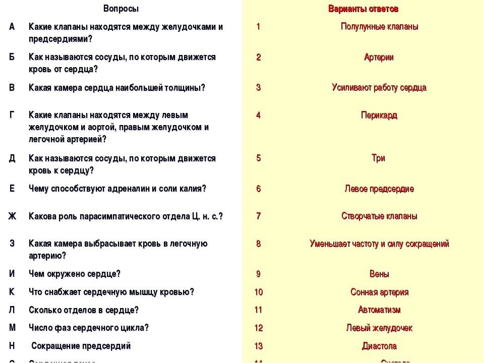 ВопросыВарианты ответов АКакие клапаны находятся между желудочками и предс...