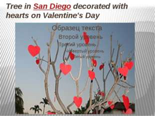 Tree in San Diego decorated with hearts on Valentine's Day