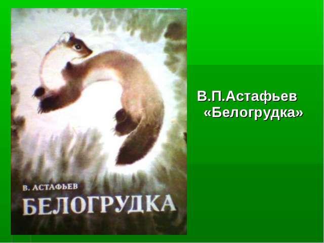 В.П.Астафьев «Белогрудка»