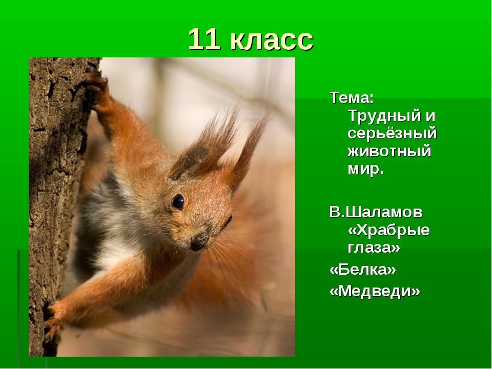 11 класс Тема: Трудный и серьёзный животный мир. В.Шаламов «Храбрые глаза» «Б...