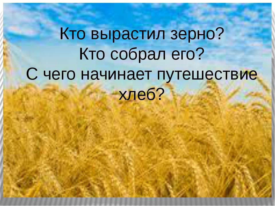 Кто вырастил зерно? Кто собрал его? С чего начинает путешествие хлеб?