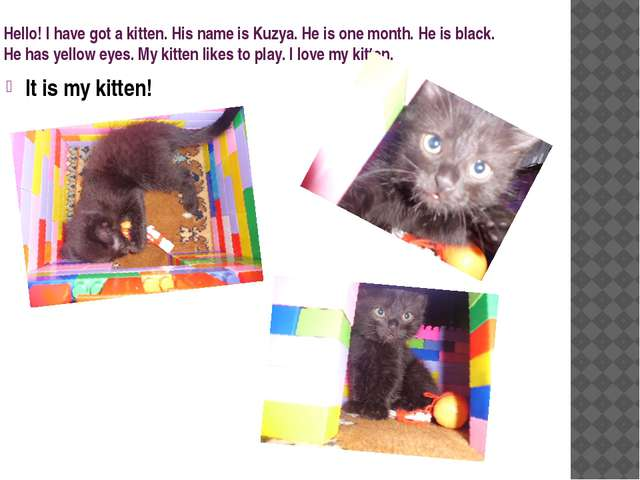 Hello! I have got a kitten. His name is Kuzya. He is one month. He is black....