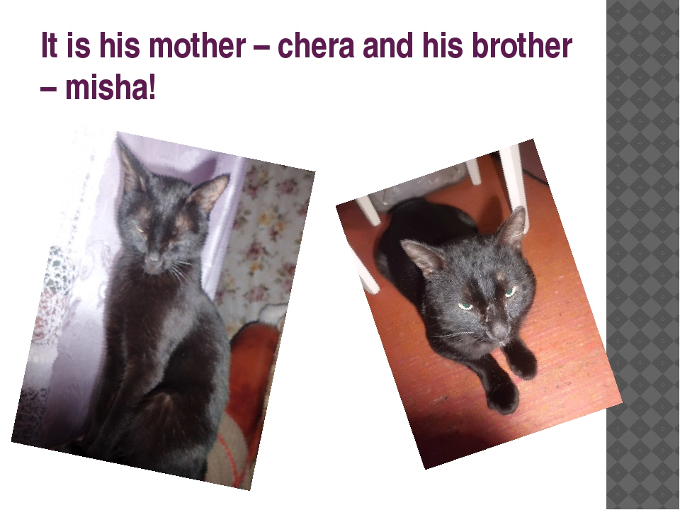 It is his mother – chera and his brother – misha!