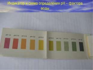 Индикатор и схема определения pH – фактора воды