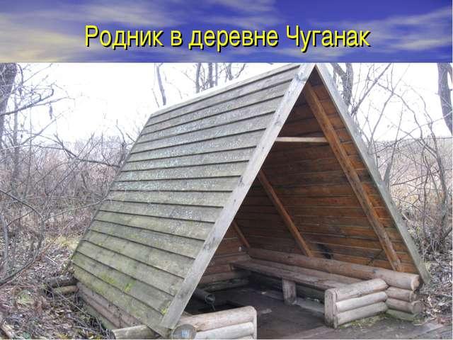 Родник в деревне Чуганак