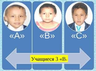 Учащиеся 3 «В»