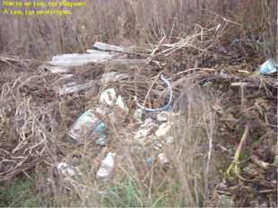 Чисто не там, где убирают, А там, где не мусорят.