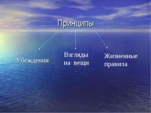 Принципы Убеждения Взгляды на вещи Жизненные правила