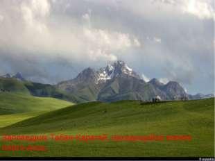 Заповедник Табан-Карагай, находящийся южнее плато Ассы