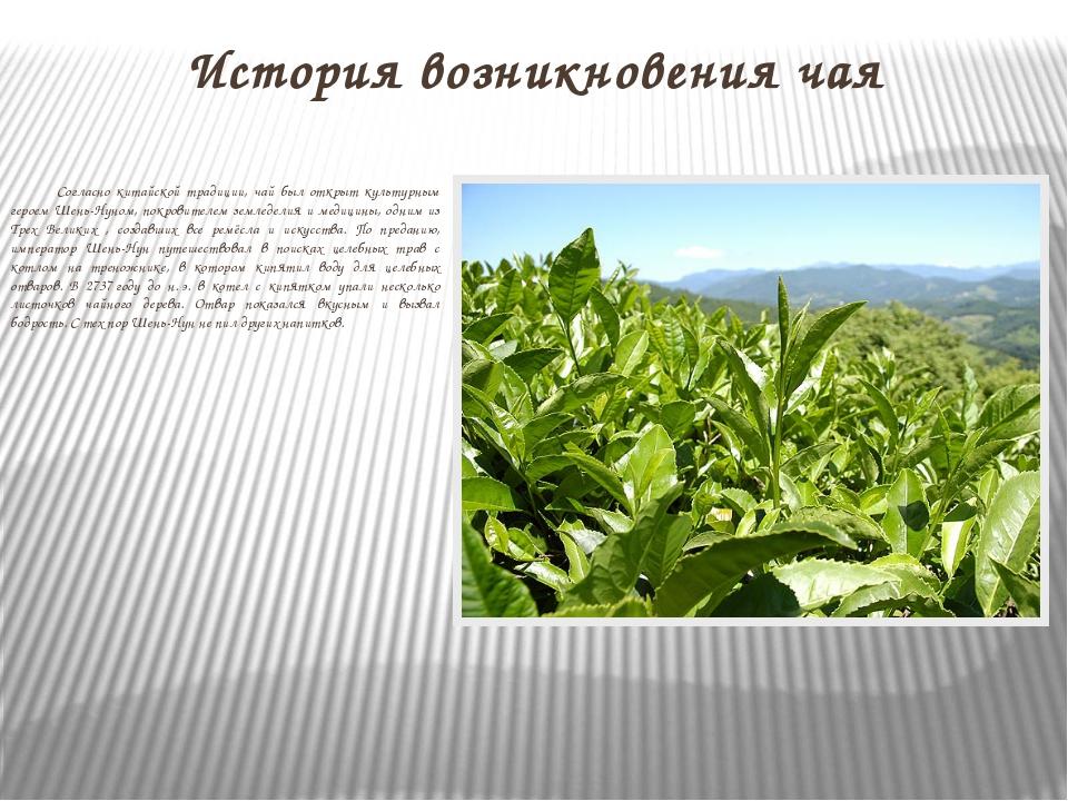 История возникновения чая Согласно китайской традиции, чай был открыт культур...