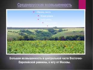 Среднерусская возвышенность Большая возвышенность в центральной части Восточн