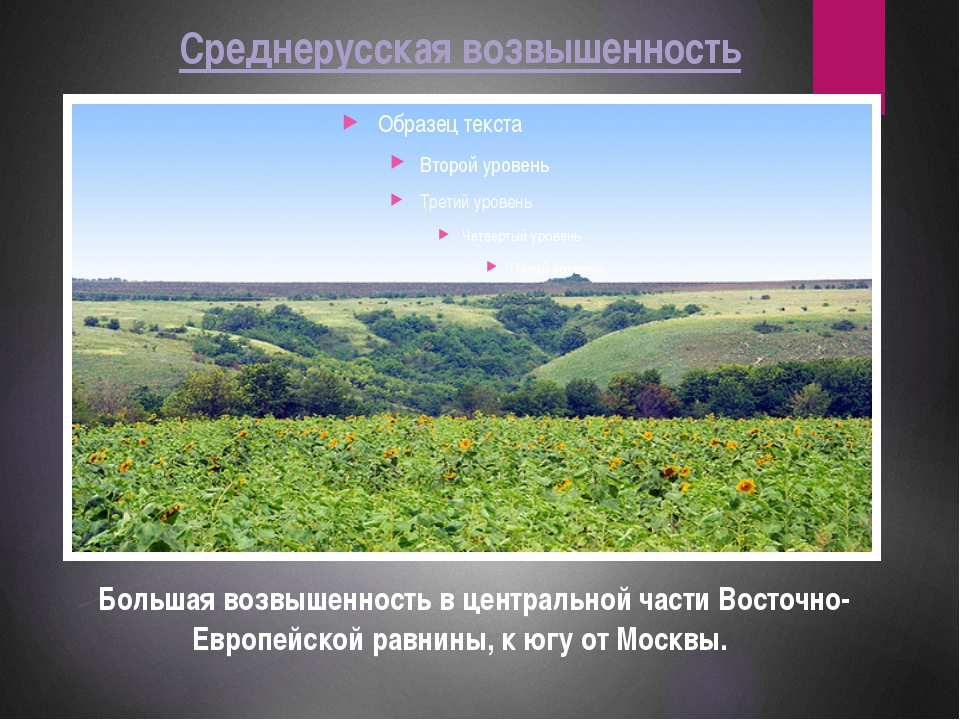 Среднерусская возвышенность Большая возвышенность в центральной части Восточн...