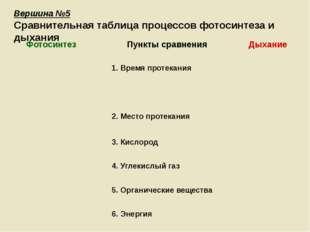 Вершина №5 Сравнительная таблица процессов фотосинтеза и дыхания Фотосинтез П