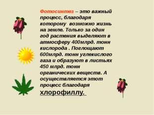 Фотосинтез – это важный процесс, благодаря которому возможно жизнь на земле.