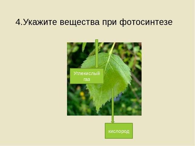 4.Укажите вещества при фотосинтезе Углекислый газ кислород