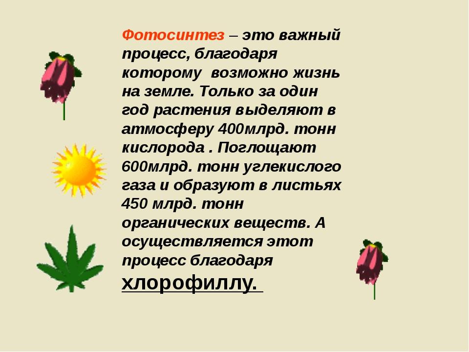 Фотосинтез – это важный процесс, благодаря которому возможно жизнь на земле....