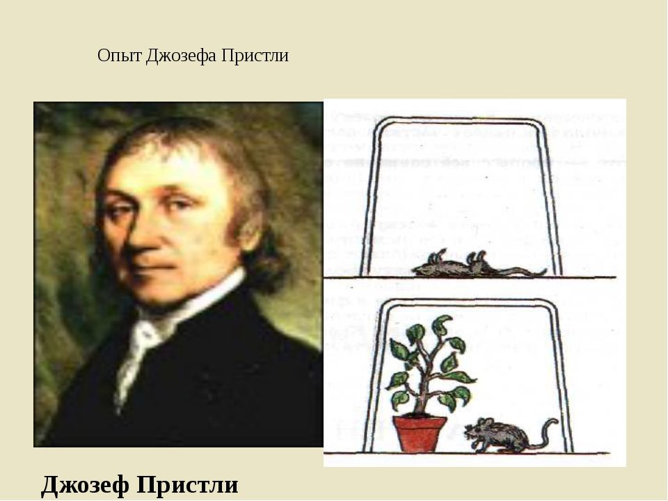 Опыт Джозефа Пристли Джозеф Пристли