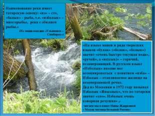 Наименование реки имеет татарскую основу: «из» – сто, «балык» - рыба, т.е. «и