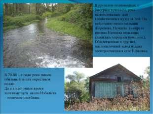 В прошлом полноводная, с быстрым течением, река использовалась для хозяйствен