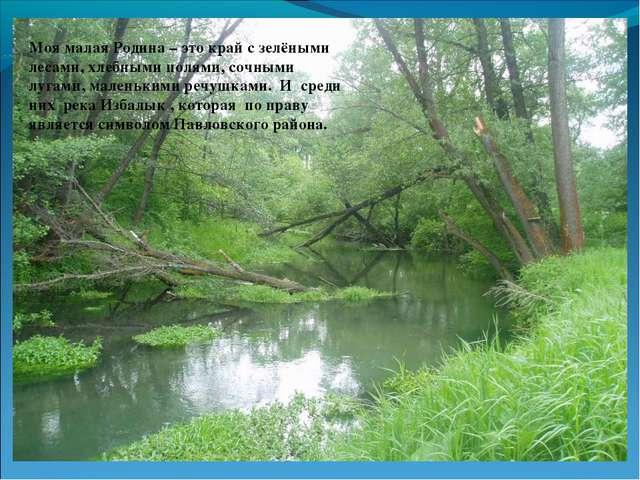 Моя малая Родина – это край с зелёными лесами, хлебными полями, сочными лугам...