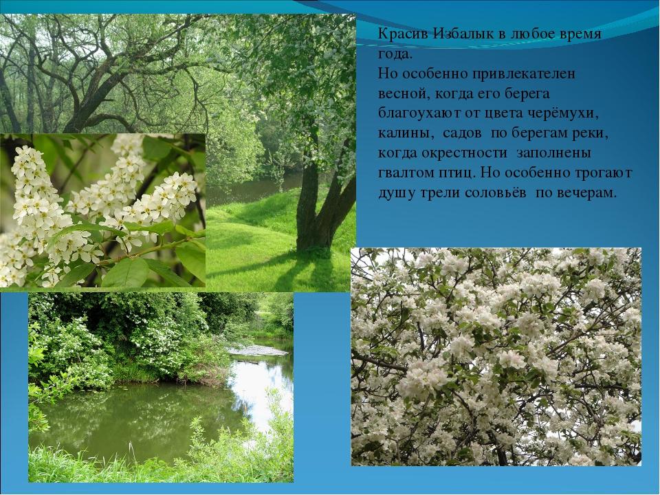 Красив Избалык в любое время года. Но особенно привлекателен весной, когда ег...