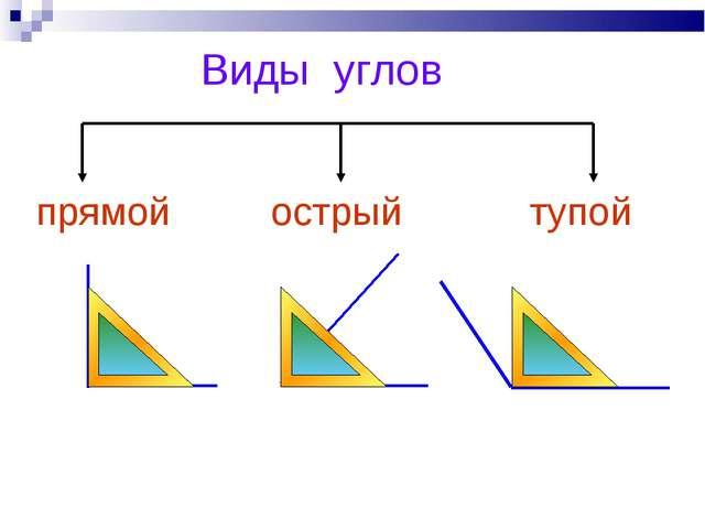 Конспект 2 классвиды углов