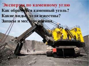 Эксперты по каменному углю Как образуется каменный уголь? Какие виды угля из