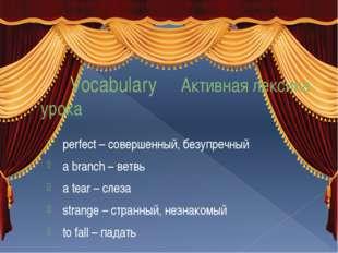 Vocabulary Активная лексика урока perfect – совершенный, безупречный a branc