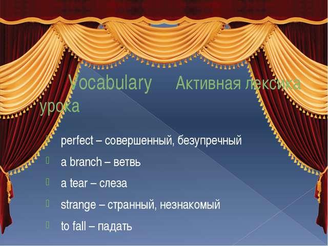 Vocabulary Активная лексика урока perfect – совершенный, безупречный a branc...