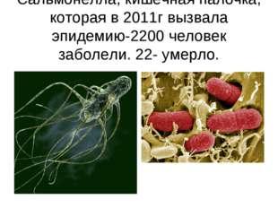 Сальмонелла, кишечная палочка, которая в 2011г вызвала эпидемию-2200 человек
