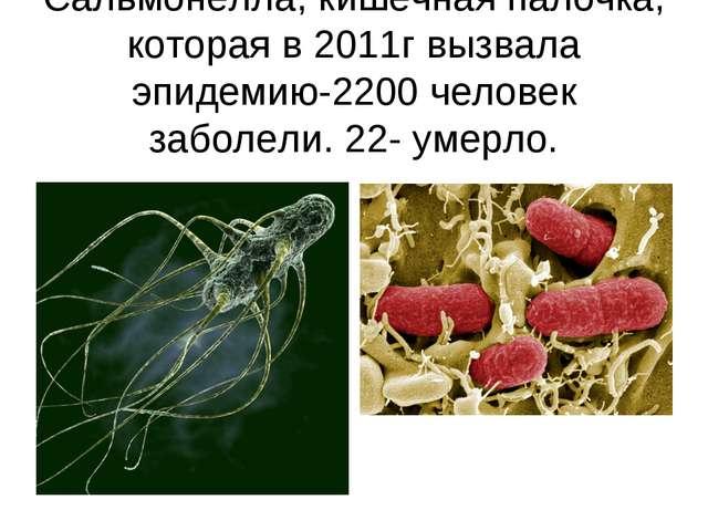 Сальмонелла, кишечная палочка, которая в 2011г вызвала эпидемию-2200 человек...