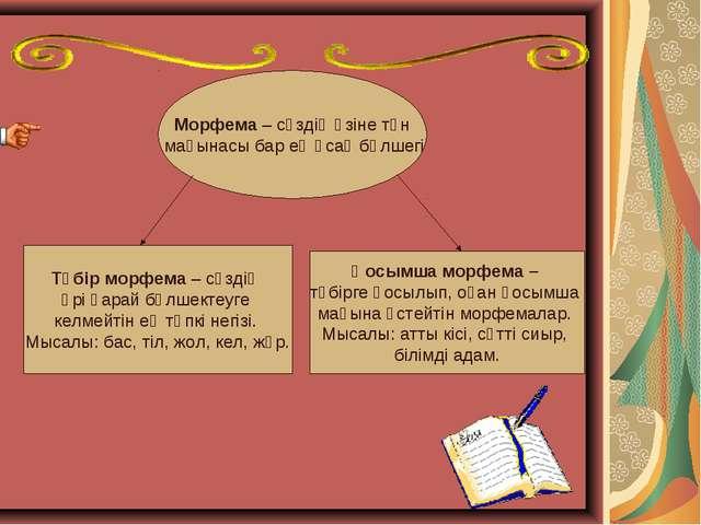 Морфема – сөздің өзіне тән мағынасы бар ең ұсақ бөлшегі Түбір морфема – сөзді...