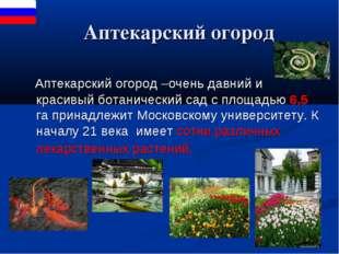 Аптекарский огород Аптекарский огород –очень давний и красивый ботанический
